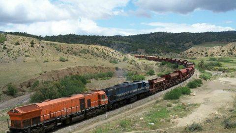 Freight train in Algeria. Photo: SNTF